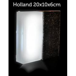 LED light-emitting paving Holland 20x10