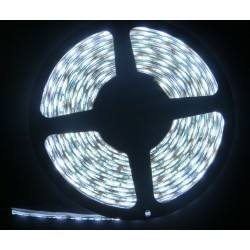 strip LED 5050 60LED/m IP20 RGB widith 5m
