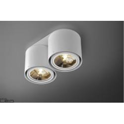 Ceiling lamp AQUAFORM TUBA 111x2 Distance 45630