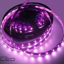 Taśma LED 300 Fioletowa Rolka 5m niewodoodporna 8mm