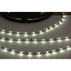Profesjonalna taśma LED 5mm Biała Zimna