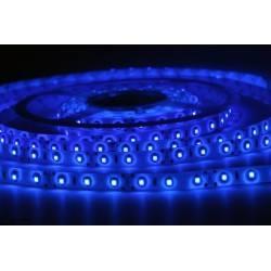 Profesjonalna taśma LED 300 Niebieska 5m IP20, IP65