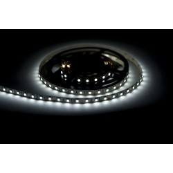 Tape LED 300 SMD5050 Cool White 5m not waterproof 10mm