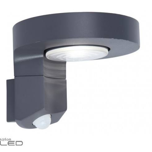 LUTEC DISO Outdoor wall lamp with motion sensor